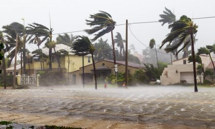 Protect Yourself Against Hurricanes