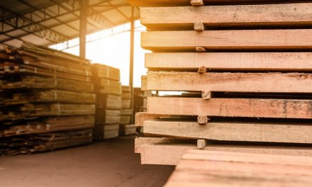 Benefits of Timber Builds | Part One